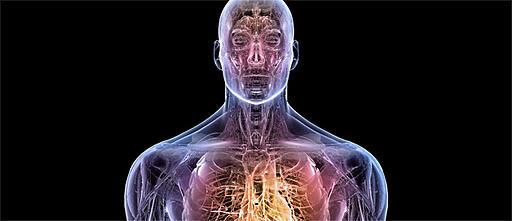 الحياة الثانية كبيئة تدريبية لطلاب كليات الطب والجراحة