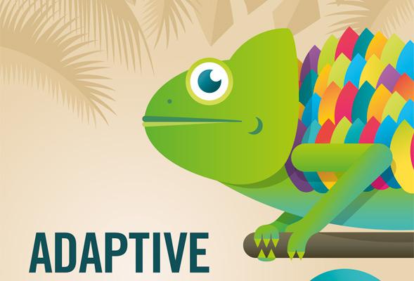 adaptive-webdesign-port-1